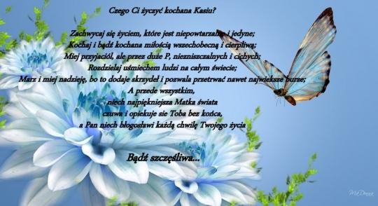 1-niebieski-kwiaty-motyl